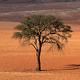 Namibiya Desert Landscape